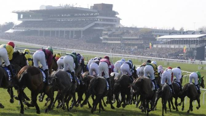 Women sport news - Cheltenham Going news & non-runners on The November Meeting Saturday