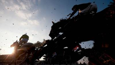 Women sport news - News Years Day Cheltenham Racing