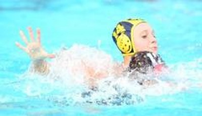 Women sport news - Stingers announce senior squad to prepare for 2012